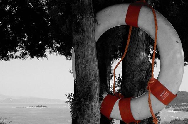 Best Lifejacket For Dogs Kayaking Uk