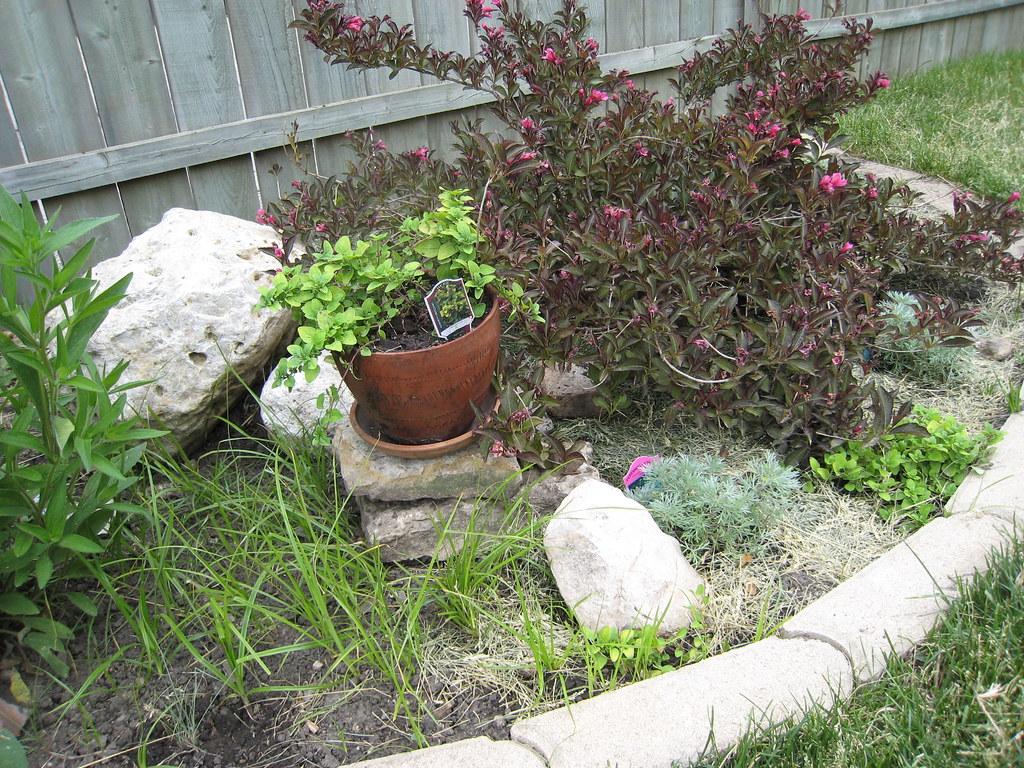 Good Garden Design Ideas