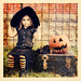 When black cats prowl and pumpkins gleam, May luck be yours on Halloween. ~Author Unknown