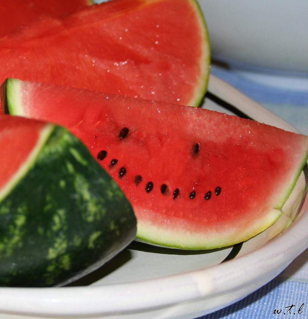 cocomero frutto