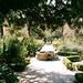 jardin botanico1