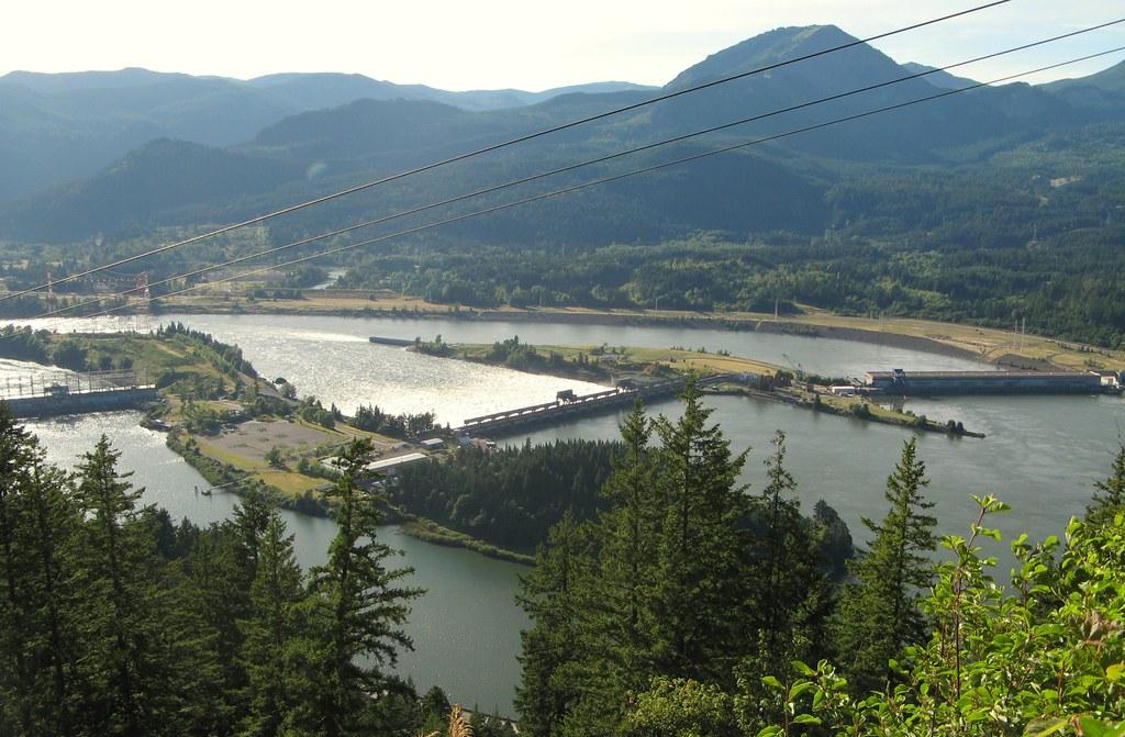 I don 39 t like this dam bonneville dam in the columbia for Bonneville dam fish camera