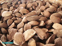 Brazil nuts | by jmarconi