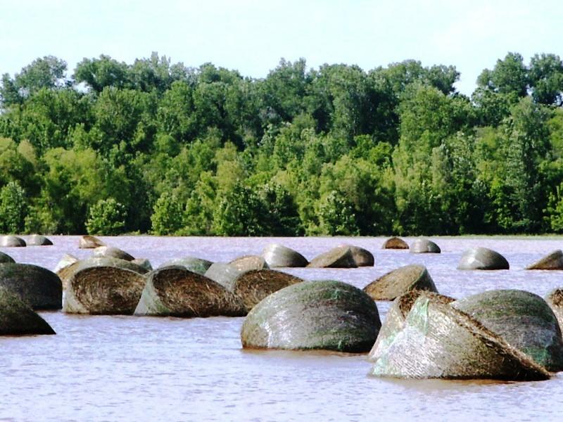 Tishomingo National Wildlife Refuge, Oklahoma | flooded fiel ...