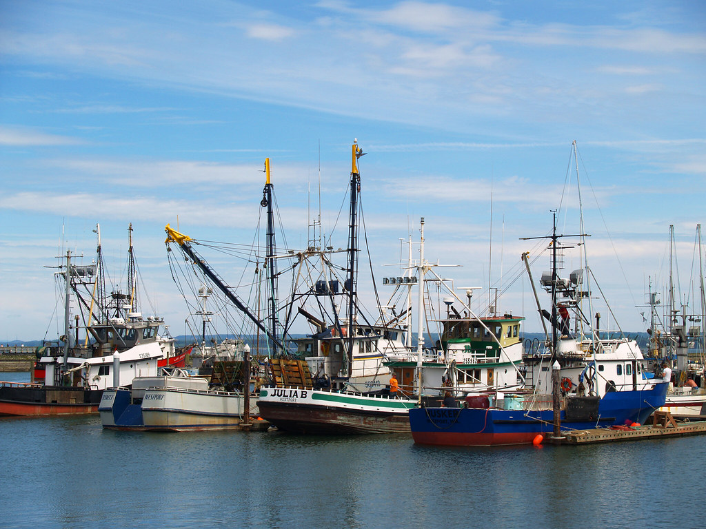 Fleet fishing boats lined up at the dock in westport wa for Westport wa fishing report