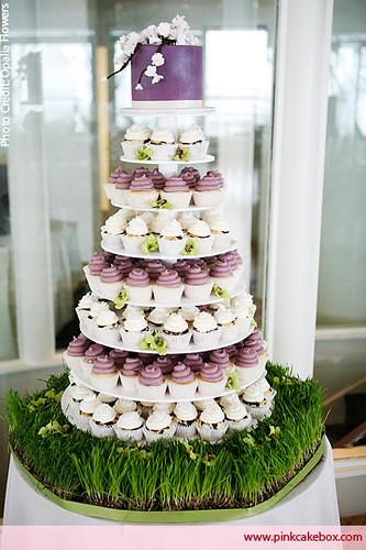 Cupecake Tower That Holds Cake