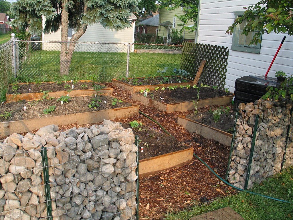 Raised Bed How To Garden