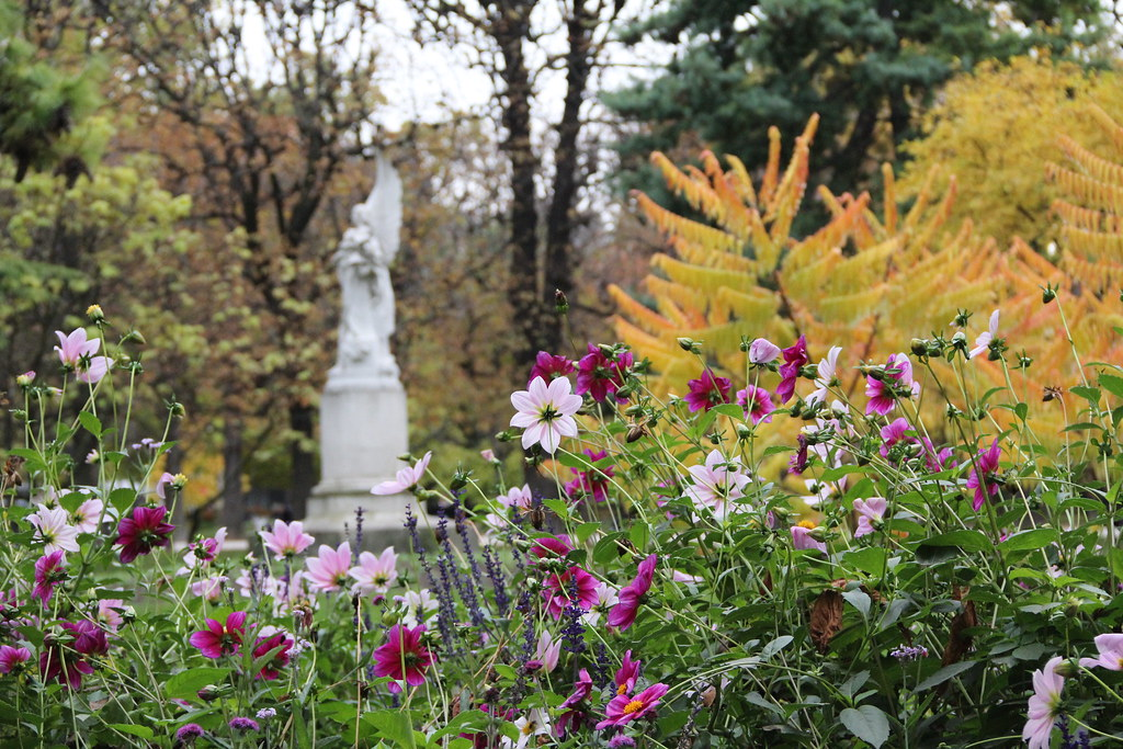 Beautiful garden flowers and trees georges adrien for Trees garden of jane delawney blogspot