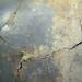 Cracked Basement Floor