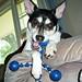 2007-06-25 - Morning Playtime - 0022