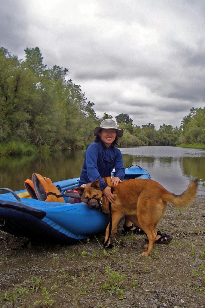Russian River Dog Friendly Beach