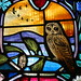 Local Wildlife - stained glass window, Dornoch Cathedral #1