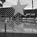The Pool at Disney All Star Resort
