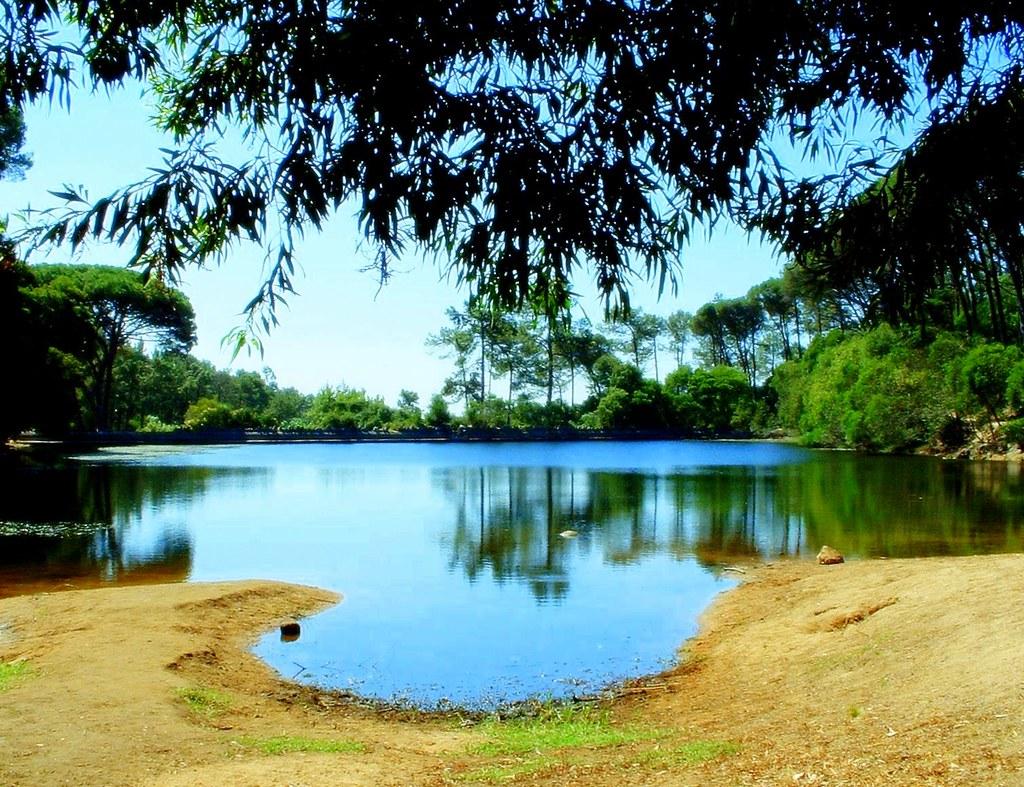 A lagoa azul - 5 10