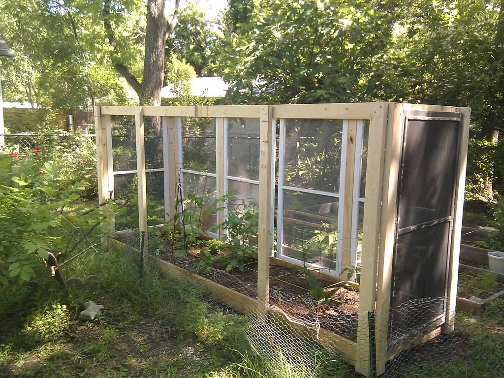 Our tomato garden enclosure still needs some more screen for Garden enclosure