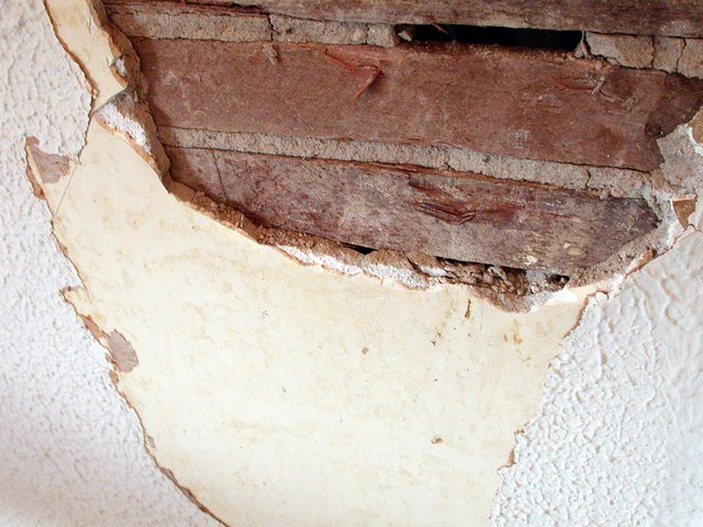 horse hair plaster walls you can see each layer of plaster flickr. Black Bedroom Furniture Sets. Home Design Ideas