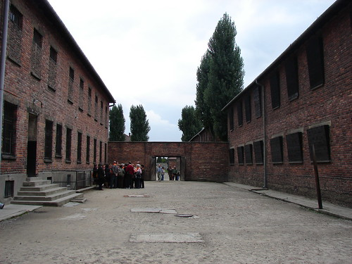 Auschwitz-The Death wall | by Ankur's