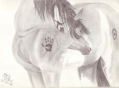 Native American Horse Drawing 3163438363_14d0d7e854.jpg