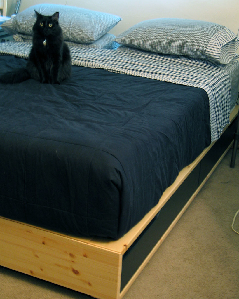Box Platform Bed Frame