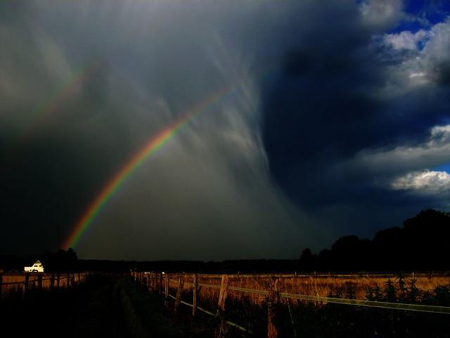 Rain Storm Thunderstorms