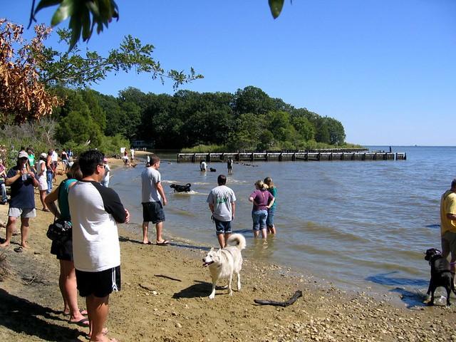 Annapolis Dog Park