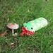 好大一只蘑菇啊!
