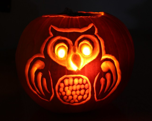 Pumpkin owl flickr photo sharing