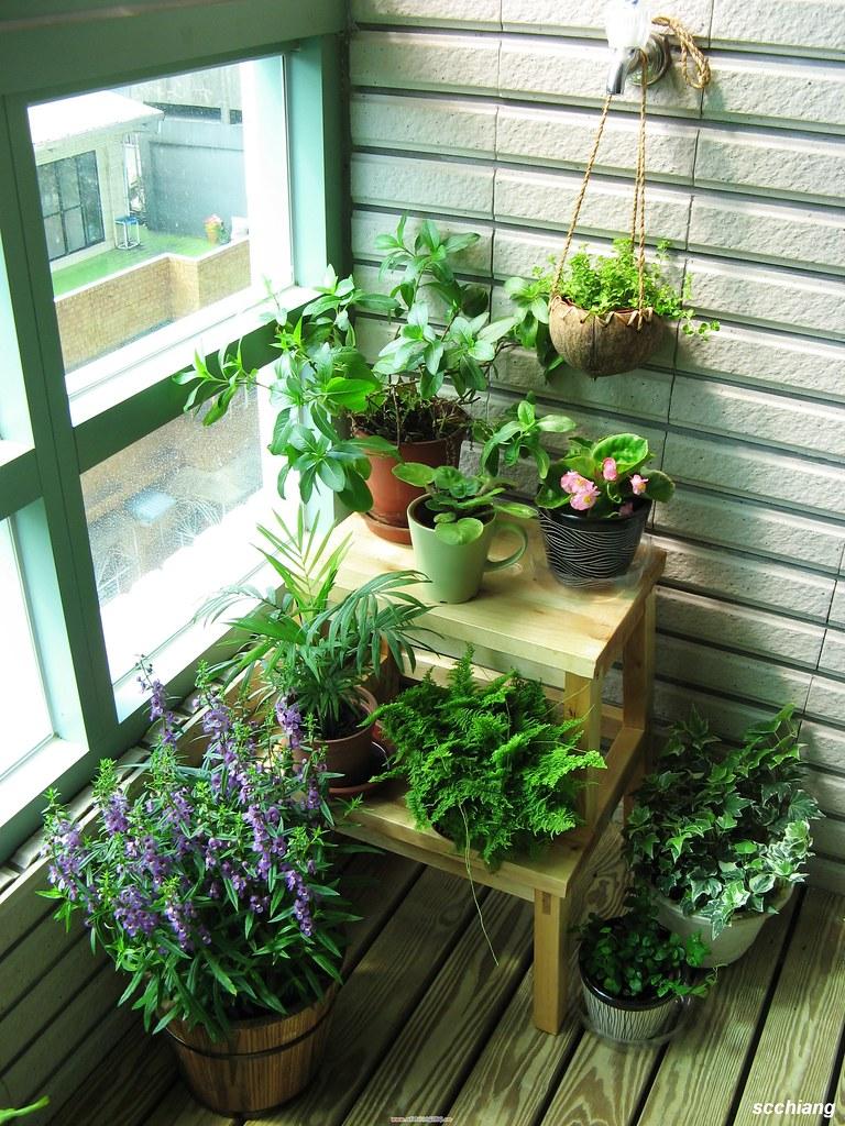 Цветы на балконе - идеи оформления интерьерные штучки.