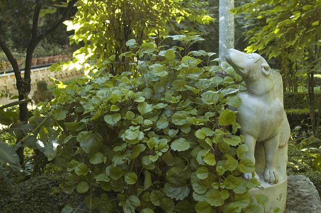 Escultura de perro jard n chico casa de pilatos sevilla for Jardin chico casa