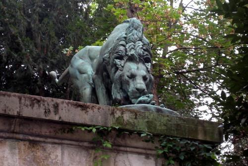 Paris jardin des plantes lion fountain the lion for Animaux jardin des plantes