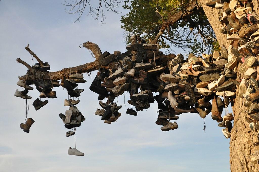 Highway 50 Shoe Tree Near Fallon Nv Shoe Tree Near