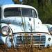 A little abandoned rusty car