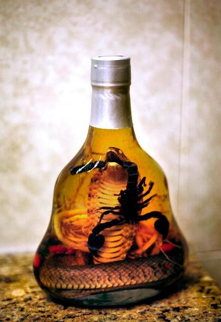 Chinese Snake Wine | T...