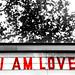 I am love. In Berlin.