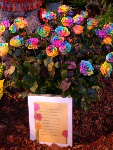 Tie dye roses flickr photo sharing for How to make tie dye roses