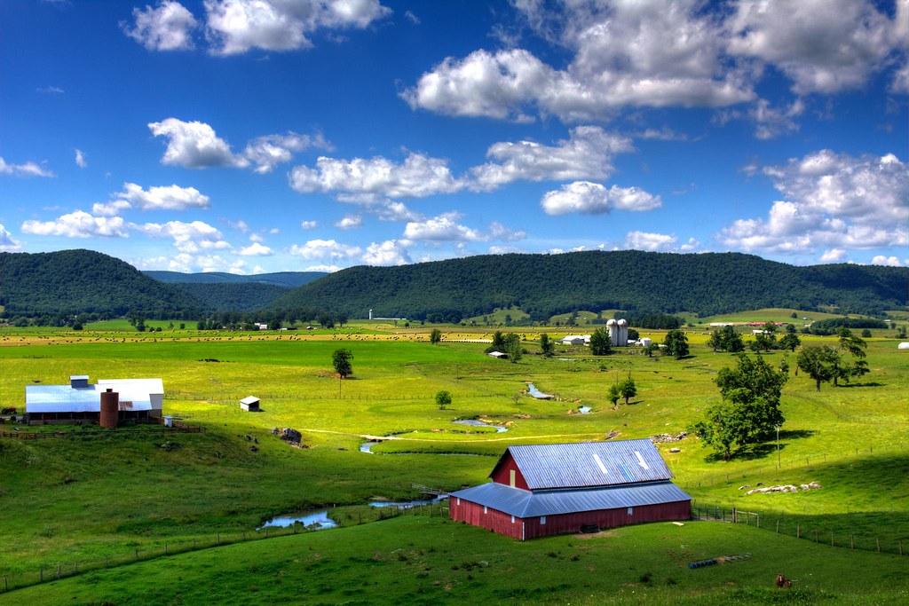 Pasture | A farm in Burkes Garden, VA. | sam1nicholson ...