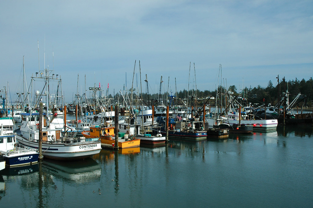 Docked in coos bay fishing boats docked in charleston for Coos bay fishing