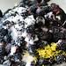Blackberry Cobbler #2 064