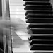 Ghost Hand on Piano 5309