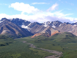 Denali National Park is beautiful all over | by Donna62
