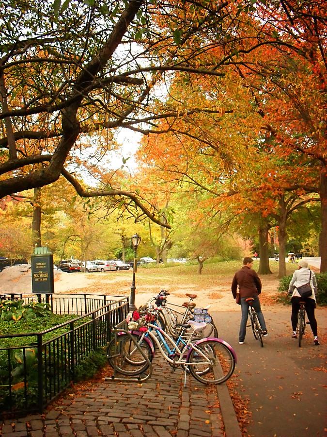 Central Park, New York City 405