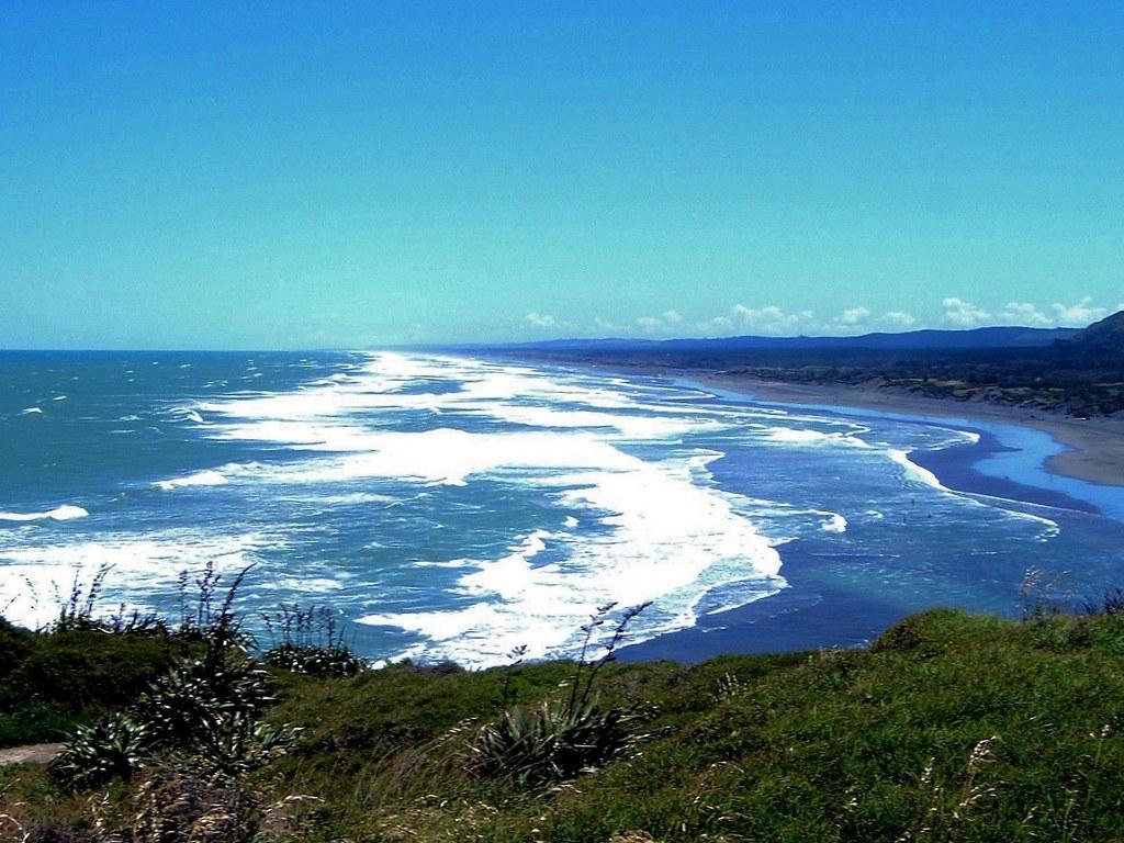 muriwai beach  waitakere city  auckland  new zealand