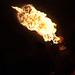 Sageta de foc