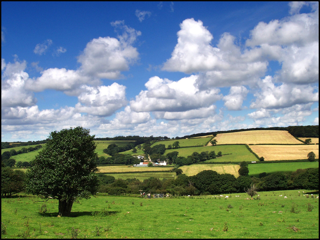 Devon Countryside The West Okement Valley From The