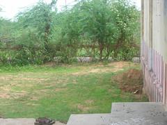 Thirumaligai