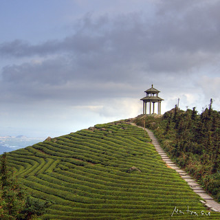 Tea Mountain: Pagoda | by @yakobusan Jakob Montrasio 孟亚柯