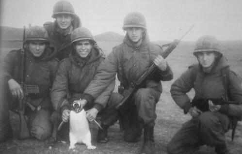 Tom,El perro martir Argentino (Emoción%100)