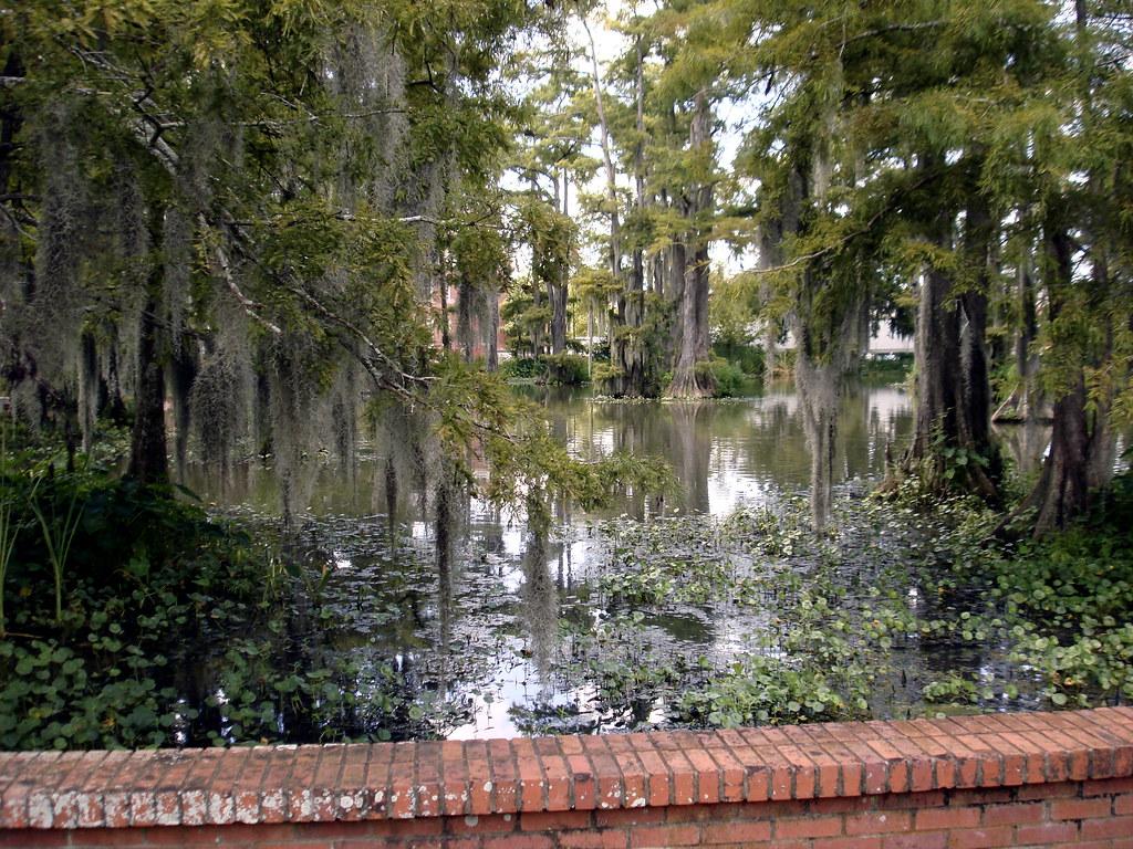New Homes Cypress Creek Lakes