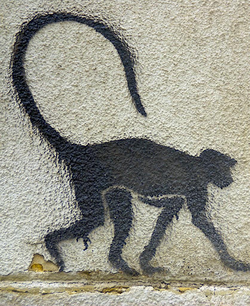 Monkey Stencil Monkey / Stencil Art