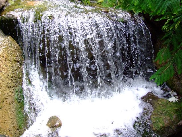 Giardino Botanico Di Merano Flickr Photo Sharing